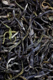 Closeup of chinese tea Stock Photos