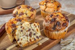 Closeup of Chocolate Chip Muffins royalty free stock images