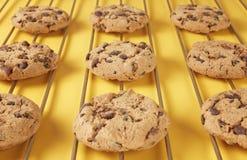 Closeup of chocolate cookies Stock Photo