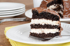 Closeup chocolate cream cake on plate Stock Image