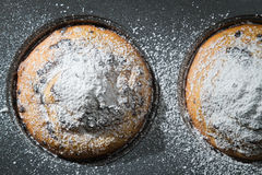 Closeup chocolate muffin with caster sugar Royalty Free Stock Images