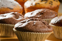 Closeup chocolate and vanilla muffins stock image