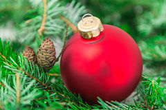 Closeup of Christmas ball from Christmas tree Stock Photo