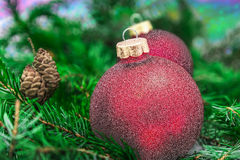 Closeup of Christmas ball from Christmas tree Stock Image