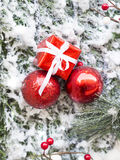 Closeup of Christmas ball with pine branch Royalty Free Stock Image