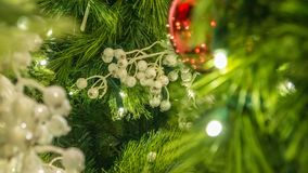 Closeup Of Christmas Berries Ornament On Tree. Closeup of white Christmas berries ornament on tree with detailed pine needles stock photography