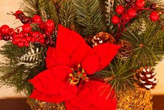 A closeup of Christmas decorations with greenery, poinsettias, and red berries. royalty free stock images