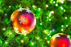 Closeup of Christmas-tree Royalty Free Stock Image
