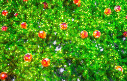 Closeup of Christmas-tree Royalty Free Stock Photography