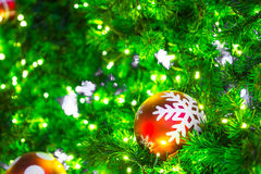 Closeup of Christmas-tree Royalty Free Stock Photography