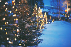 Closeup of Christmas tree Royalty Free Stock Images