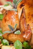 Closeup of Christmas turkey royalty free stock images