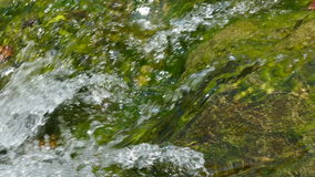 Closeup of churning stream water stock footage