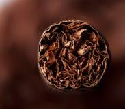 Closeup of cigar Royalty Free Stock Photography