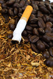 Closeup of cigarettes detail on tobacco background Stock Photo