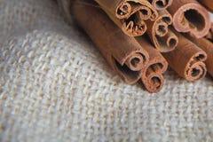 Closeup of cinnamon bark sticks Stock Image