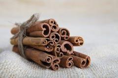 Closeup of cinnamon sticks Royalty Free Stock Image