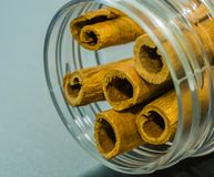 Cinnamon sticks in a glass jar. Closeup of cinnamon sticks in a glass jar with blurred out background Royalty Free Stock Photo