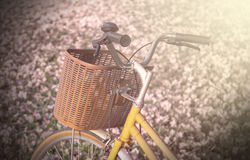 Closeup Classic Bicycle with beautiful floral on the glass, soft Stock Photo