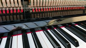 Piano keyboard. Closeup of a classical piano keyboard royalty free stock photo
