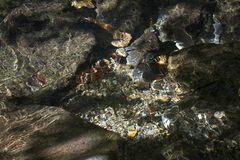 Closeup of clear reflections in water Royalty Free Stock Photos