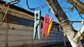 Blue, red, pink and yellow clothespin on an empty rack stock image