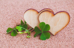 Closeup clover leaf and stone Royalty Free Stock Photo
