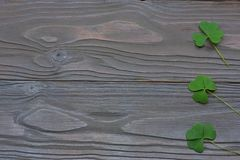 Closeup clovers leaves on dark wooden background top view with copy space Stock Photography