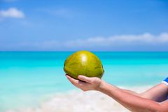 Closeup of coconut in hands against the turquoise Royalty Free Stock Photos
