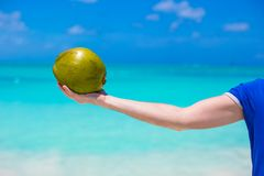 Closeup of coconut in hmale ands background the Royalty Free Stock Photo