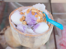 Closeup of coconut milk ice-cream in coconut shell strew with ground nut Stock Images