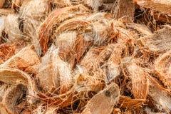 Closeup coconut spathe fiber for texture background. Stock Image
