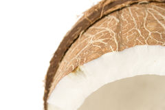 Closeup - Coconut on white. Closeup of a coconut isolated on white background stock photos