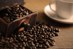 Closeup of coffee beans. Shallow dof royalty free stock images