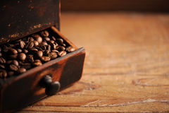 Closeup of coffee beans. Shallow dof royalty free stock photography