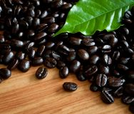 Closeup of  coffee beans . Royalty Free Stock Photos