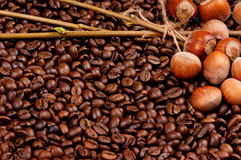 Closeup of coffee beans and filberts. Top view Royalty Free Stock Image