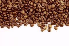 Coffee beans. Closeup of coffee beans on plain background Stock Images