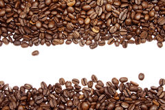 Coffee beans. Closeup of coffee beans on plain background Stock Image