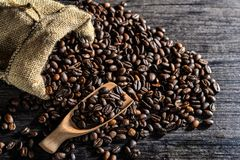 Closeup of coffee beans with scoop in mood lighting Royalty Free Stock Images
