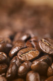 Closeup of coffee beans with Shallow depth of field. Closeup of arabica coffee beans with Shallow depth of field Royalty Free Stock Photo