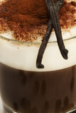 Closeup on coffee with milk froth cocoa powder wit. Closeup on coffee with milk froth and chocolate powder with vanilla beans on top stock photo