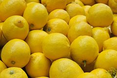 Closeup of collection of whole lemons Stock Images