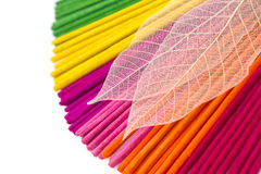 Closeup coloorful aroma incense sticks Stock Image