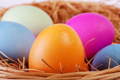 Closeup of colored easter eggs Royalty Free Stock Photos