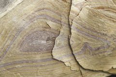 Closeup of colorful desert sandstone. Sandstone from the Hot Springs trail in Big Bend National Park Texas Stock Photos