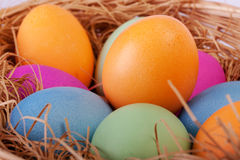 Closeup of colorful easter eggs in the nest Stock Photo