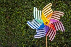 Colorful pinwheel with green background stock photos