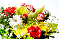 Closeup of colorful spring flowers bouquet on white background Royalty Free Stock Photos