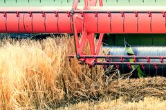 Closeup Combine harvesting a wheat field. Combine working. The field Royalty Free Stock Photography